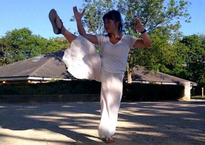 Tai Chi The Way Of Life Wendy Chan